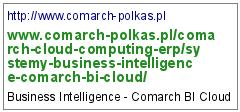 http://www.comarch-polkas.pl/comarch-cloud-computing-erp/systemy-business-intelligence-comarch-bi-cloud/